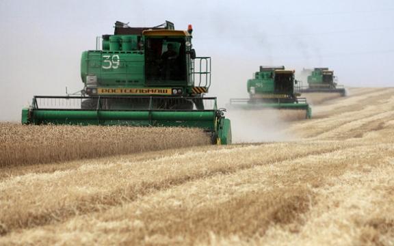 De uitgestrekte vlaktes in het westen van Oekraïne waren ooit de graanschuur van de Sovjet-Unie. Vandaag azen bedrijven als Monsanto erop