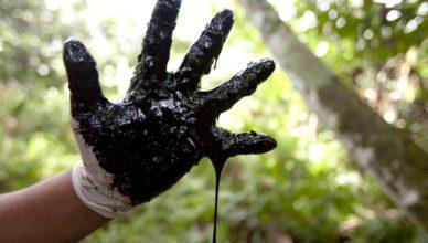 Ruwe olie uit één van de honderden verlaten putten van Chevron (voorheen Texaco), in het Ecuadoraanse regenwoud.